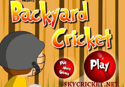 Online Backyard cricket game