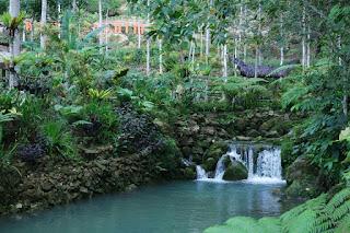 keutamaan pintu ar rayyan tidak haus selamanya di surga foto sungai mudhal tumbuha berjalancom