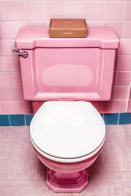Pink Toilet Cistern and Toilet Pan
