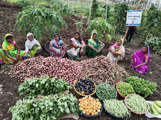महामारी में रोजगार और पोषण का इंतज़ाम करती महिलाएं