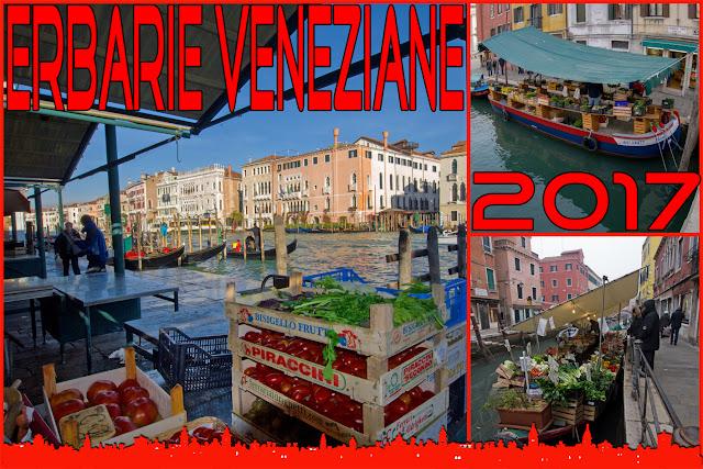 erbarie a venezia