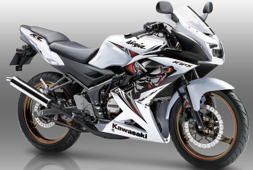 Kawasaki RR 150 Horsepower