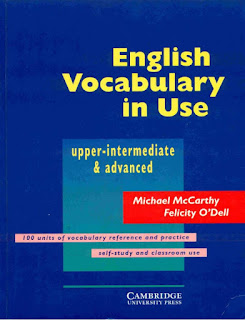 English Vocabulary In Use Advance