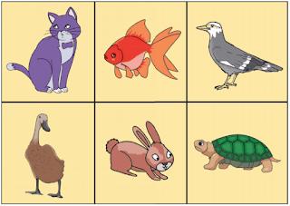 hewan-hewan peliharaan www.simplenews.me