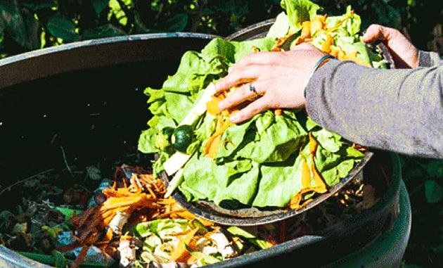 Sisa makanan termasuk limbah organik