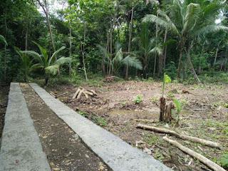 Tanah Dijual Butuh Uang Kulonprogo di Karangsari Dekat Bandara Jogja 3