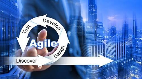 agile-organization.jpg