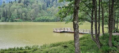 Borçka Karagöl Tabiat Parkı (Borçka Karagöl Nature Park)