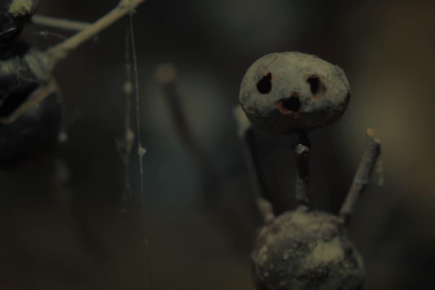 Netflix показал трейлер сериала «Каштановый человечек» - скандинавского детектива с элементами хоррора
