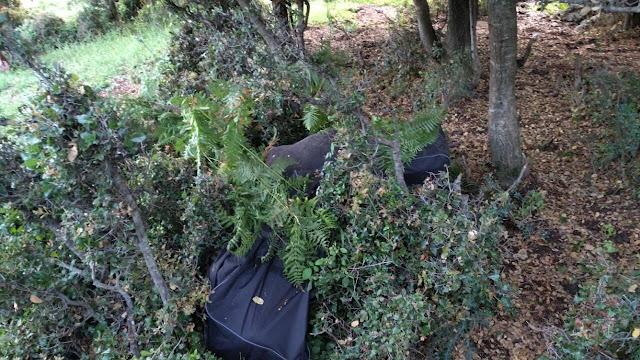 Θεσπρωτία: Βρέθηκε «καβάτζα» με πάνω από 66 κιλά κάνναβης - Συνελήφθησαν τρία άτομα