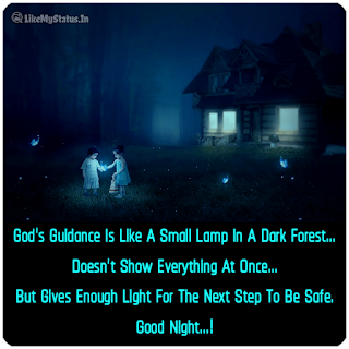 God's Guidance Is Like A Small Lamp In A Dark Forest... Doesn't Show Everything At Once... But Gives Enough Light For The Next Step To Be Safe. Goodnight...!