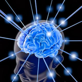 7tips otak cerdas