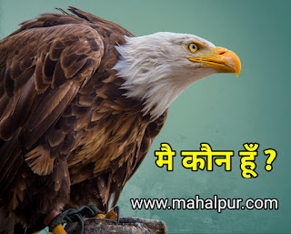 मै कौन हूँ ? (Story of eagle and chickens)