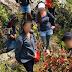 Grupo ng Hikers, Maaaring Makasuhan sa Pagpitas ng Endangered na mga Halaman sa Marinduque