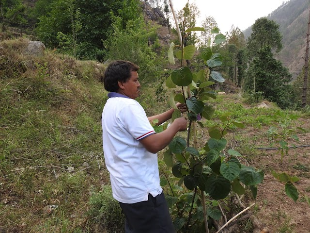 Krishak Man Vyatha कृषक मन व्यथा