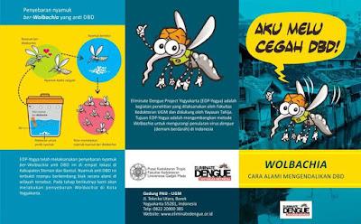 Nyamuk Aedes aegypti ber-Wolbachia
