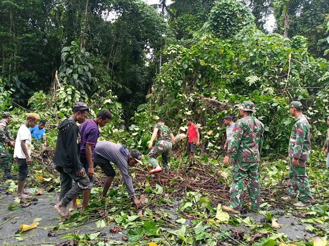 Satgas Yonif MR 413 Kostrad Cepat Tanggap Evakuasi Pohon Tumbang