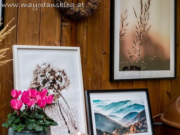 Wandgestaltung im Wintergarten und erste Adventsvorboten