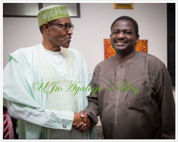 'I want the truth, I may argue, but please tell me the truth always' –President Buhari to Femi Adesina