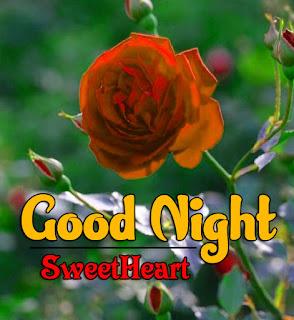 Latest Beautiful Good Night Wallpaper Free Download %2B24