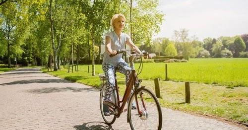 stella elektrische fiets beste koop bij e bike test. Black Bedroom Furniture Sets. Home Design Ideas