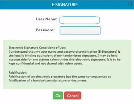Format of Electronic Signature / E-Signature