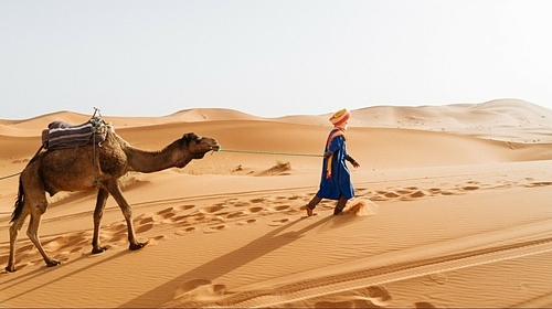 7 things await tourists in Morocco