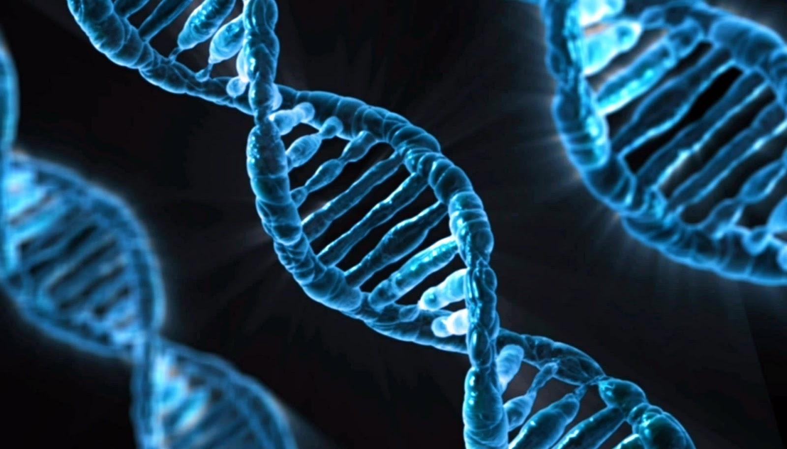 Estudo sugere vínculo genético na orientação sexual masculina