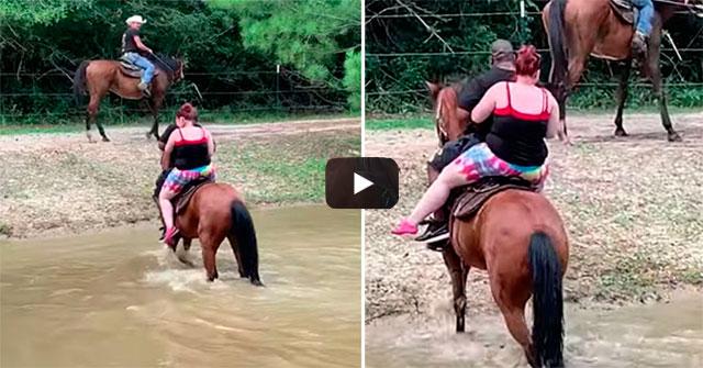 http://obutecodanet.ig.com.br/index.php/2019/07/03/cavalo-se-vinga-de-pessoas-que-o-obrigaram-a-cruzar-rio/