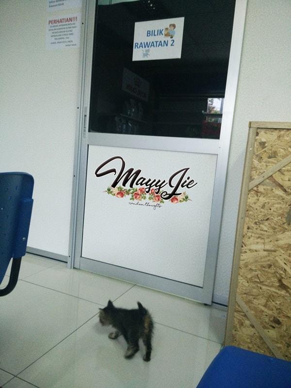 Klinik kucing kutu kulim