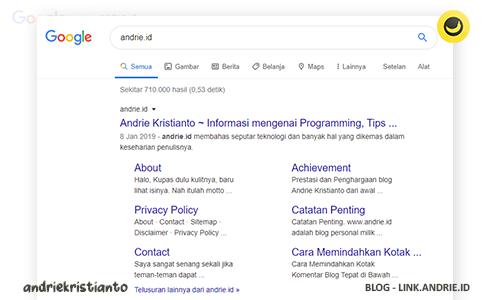 Trik Cara Membuat Sitelink Blog Muncul Lebih Cepat di Hasil Pencarian Google
