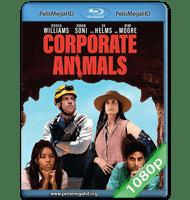 ANIMALES CORPORATIVOS (2019) 1080P HD MKV ESPAÑOL LATINO