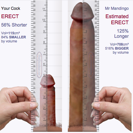 How Big Is Mandingos Penis 13