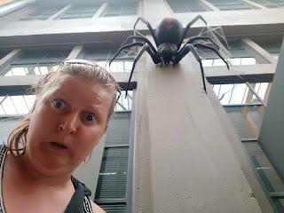 BIG Redback Spider at the Queen Victoria Museum and Planetarium