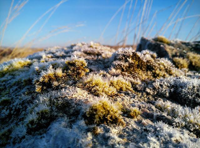frozen moss on stone boulders, Connemara