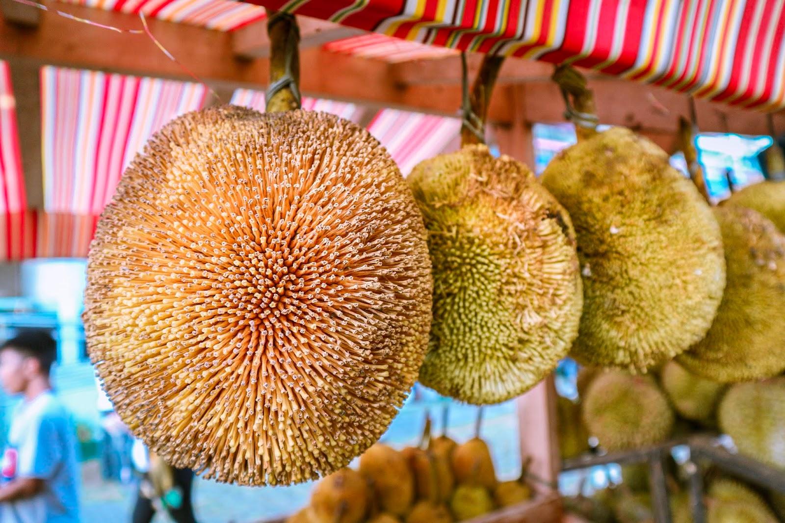 Kadayawan Durian Festival 2019