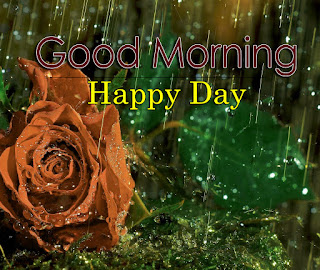 New Good Morning 4k Full HD Images Download For Daily%2B39