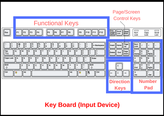 14 Basic And Latest Input Devices For Computer