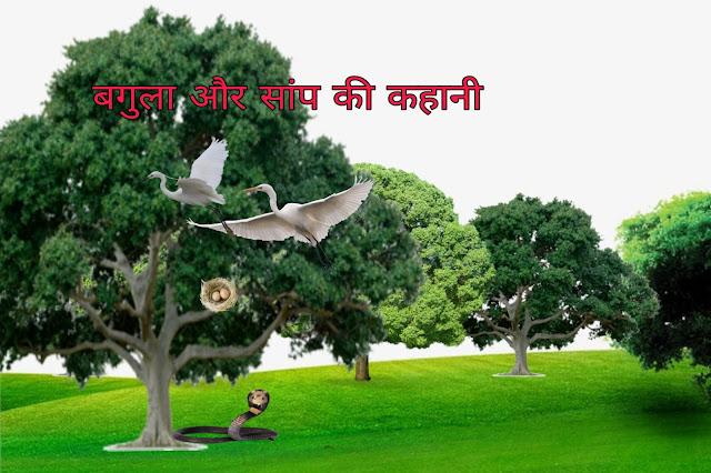 बगुला और सांप की  पंचतन्त्र कहानी , Bagula aur samp ki kahani -