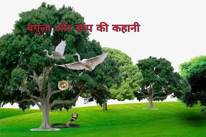 बगुला और सांप की  पंचतन्त्र कहानी | Bagula aur samp ki kahani -
