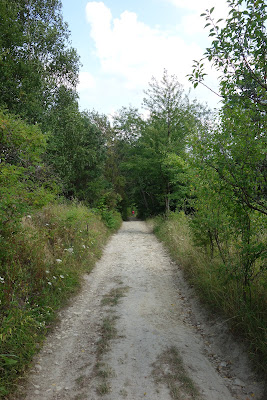 Na drodze z Bukowej Góry do wsi Sochy