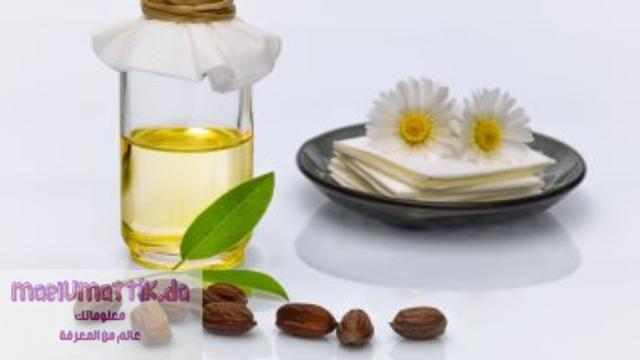 استخدامات-زيت-الجوحوبا-وفوائده