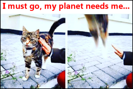 I must go, my planet needs me...