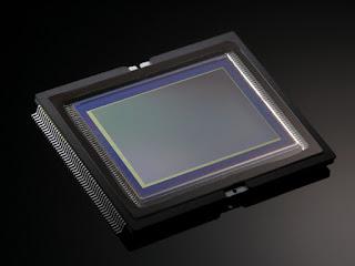 Сенсор Canon EOS 1D X