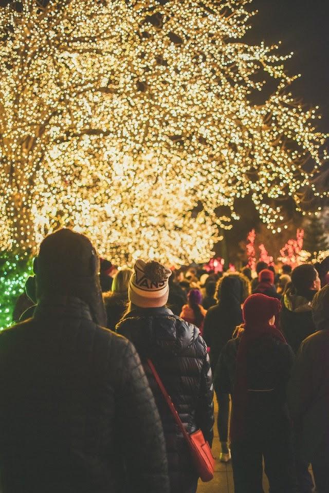 Merry Christmas in Las Vegas