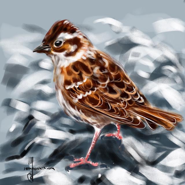 Rustic Bunting bird painting by Artmagenta