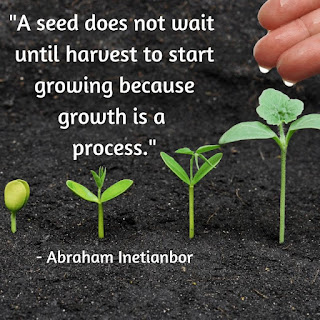 Abraham Inetianbor Growing Seed