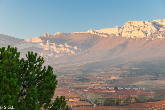 Bodega Ysios. Laguardia. Excursion Rioja alavesa en autobus