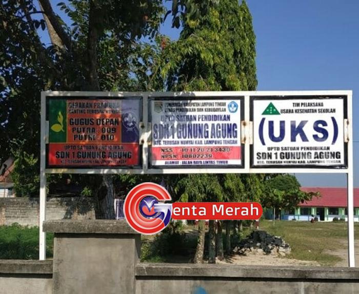 Tanah Lapangan SDN1 Gunungagung Didiuga Diserobot Pamong Kampung, Dinas Pendidikan Lamteng Tutup Mata
