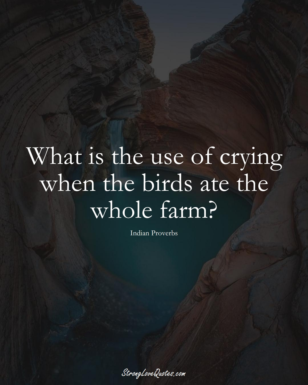 What is the use of crying when the birds ate the whole farm? (Indian Sayings);  #AsianSayings